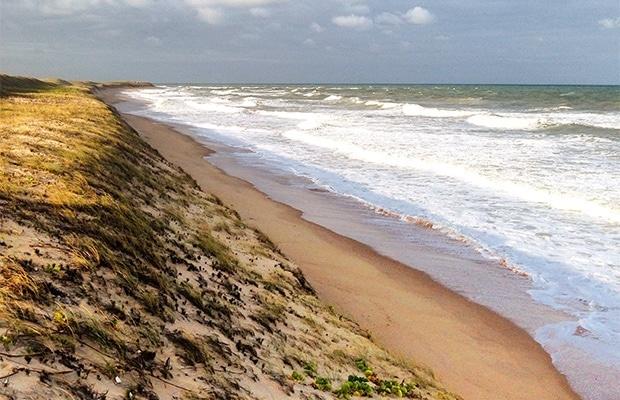 Praia do Sagi: Saiba tudo clicando aqui